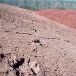 Iwariden (traces de dinosaures)