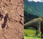 traces de dinosaures imi nifri iwaridan